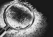 DMP Investigazioni Private